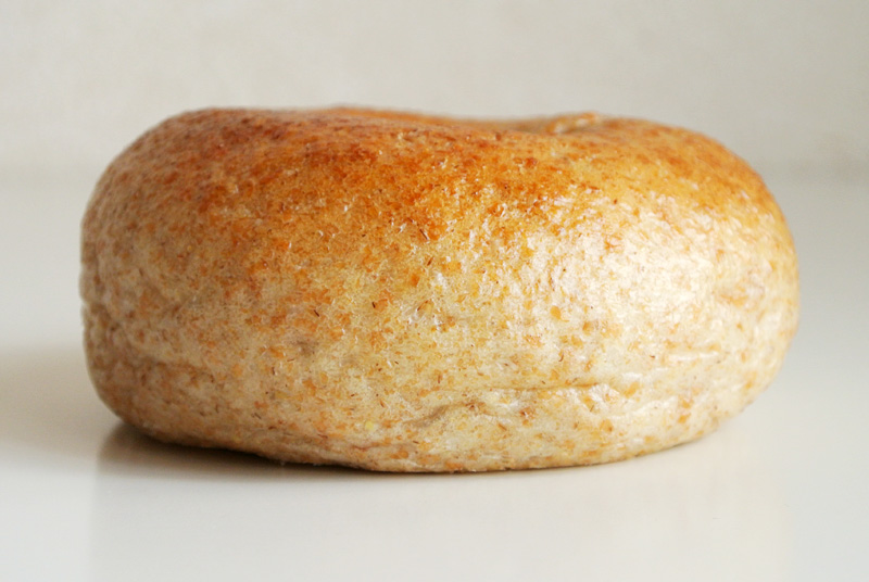 大地堂の古代小麦で作る禅ぱんのベーグル「エポートル」